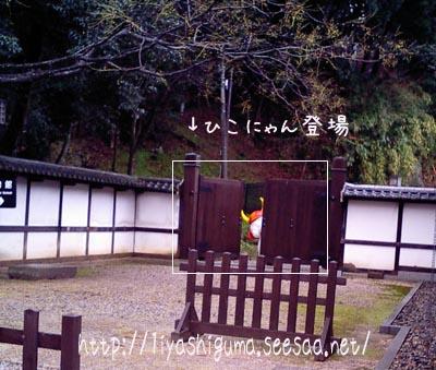 hikonilyan2007-12-4.jpg