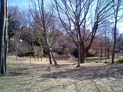 mori.2008-02-5.jpg